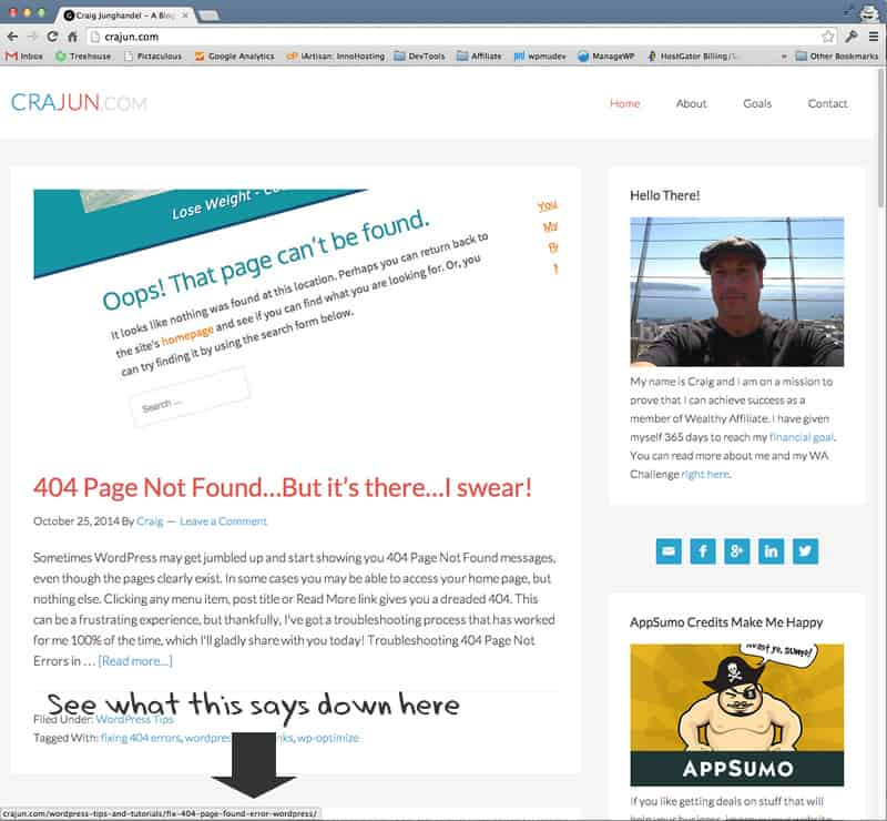 Permalink view in browser window