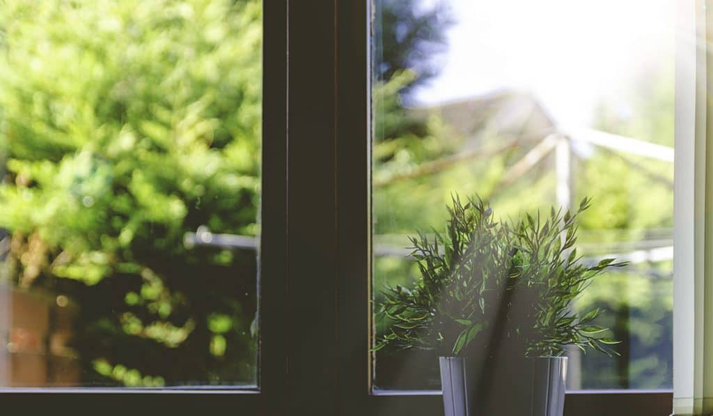 A Return to Windows